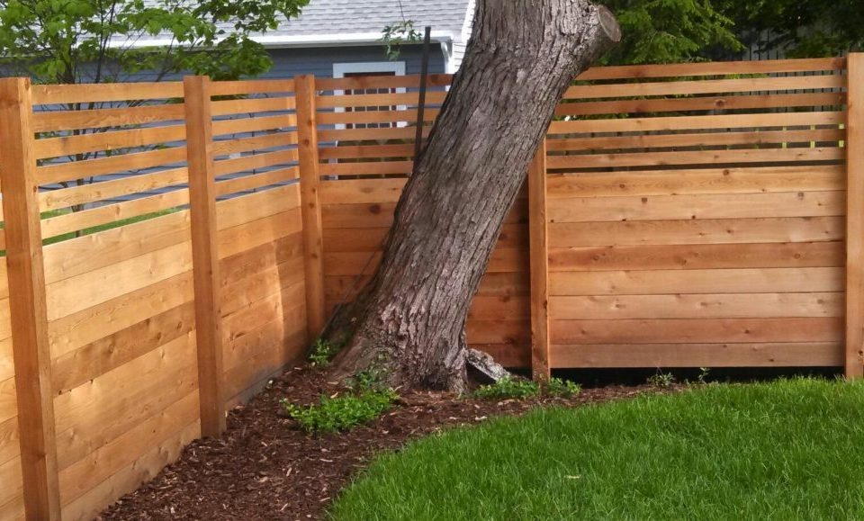 Cleaning Cedar Fences